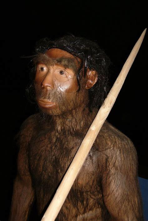 gambar jenis manusia purba