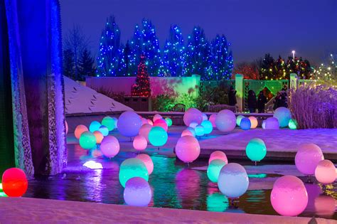 Denver Botanic Gardens Lights At Blossoms Of Light Colorado Business Committee For The Arts