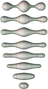 bernhard riemann early life 1000 images about mathematics on pinterest calculus