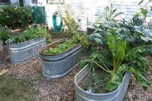 Garden Of Stock 2012 My Best Garden Year Yet The New Home Economics