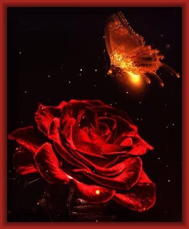 imagenes rojas de fondo fondos con rosas para tarjetas archivos imagenes de rosa