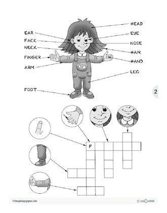 Les parties du corps / L'anglais par le jeu   anglais