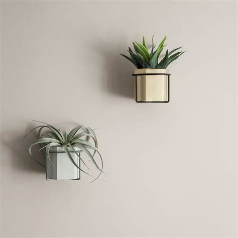 wall plant holders wall plant holder by ferm living in our shop