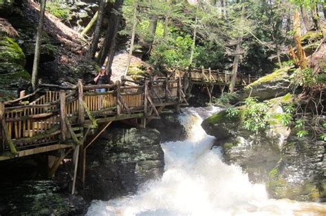 Bushkill Falls Cabins by Bushkill Photos Featured Images Of Bushkill Pocono Mountains Region Tripadvisor