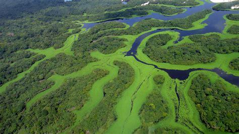 amazon brazil 10 interesting surprises about novo air 227 o amazonas
