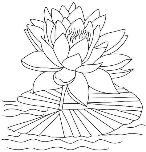 dark lotus coloring pages coloring pages