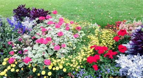kleingarten mieten berlin spandau kleingarten konferenzen daniel buchholz spd