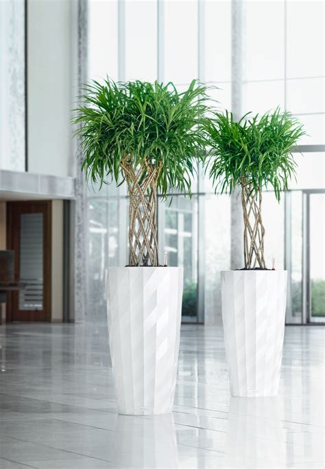 Plant Tubs Plant Containers Plant Care Inc