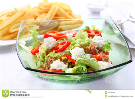 mixed vegetable salad with tuna and cottage cheese stock