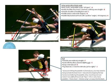dragon boat paddle technique 1000 images about everything dragon boat on pinterest