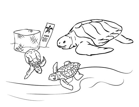 sea turtle coloring page printable free coloring pages of sea turtle