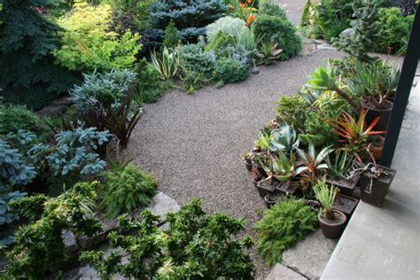 servizio giardini roma servizi giardinaggio roma progettazione manutenzione