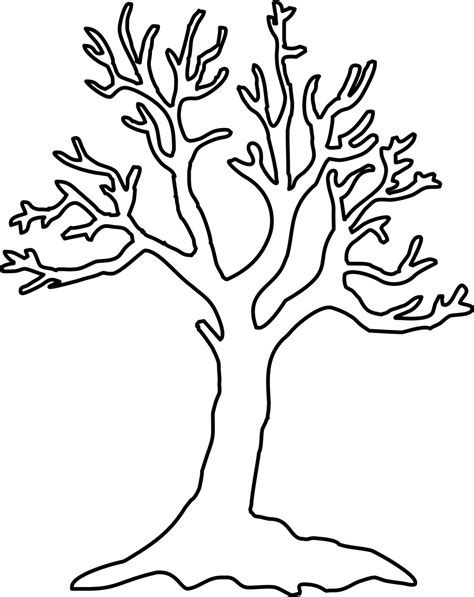 Leafless Tree Branch Outline by Bare Tree Pictures Clipart Best
