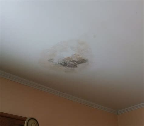 Mold On Ceiling by Bathroom Ceiling Mold Home Design Ideas And Architecture