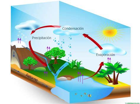 el ciclo agua primaria web maestro