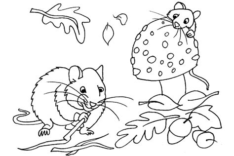 autumn animals coloring page autumn the season which is known for its nice colored trees
