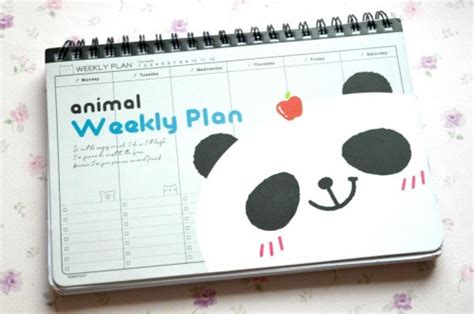 aliexpress find weekly planner raspberrykiss