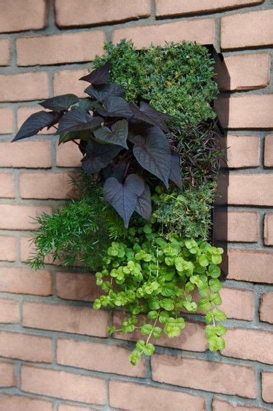 Grovert Vertical Planter 17 best images about garden ideas on front yards planters and raised flower beds