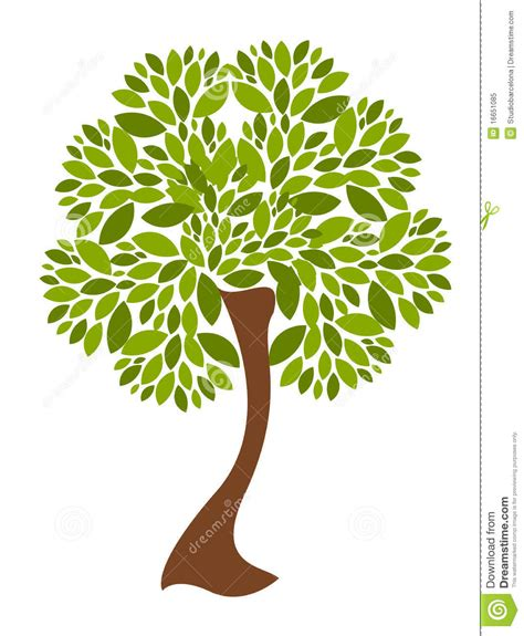 Vector Tree Illustration Stock Vector Illustration Of Spring 16651085 Royalty Free Family Tree Clip Vector Images Illustrations Istock
