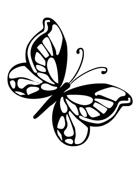 types of butterflies coloring pages butterfly coloring pages