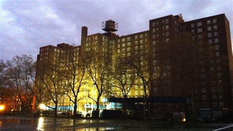 nycha housing number nycha cancels staggering number of repair requests after sandy animal