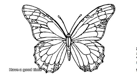 butterfly coloring page pdf butterfly coloring pages youtube
