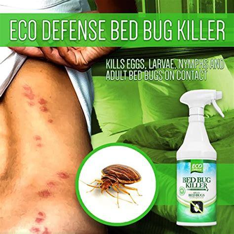 bed bug spray  reviews  insider tips