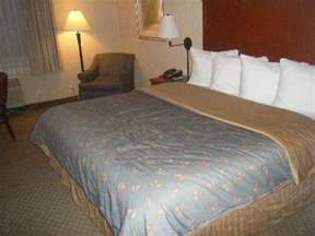 Bed Sizes Alaskan King Tv Picture Of Silver Cloud Inn Seattle