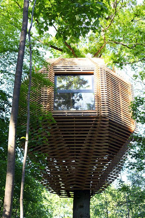 gorgeous modern treehouse hides  surprising interior