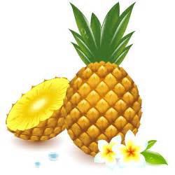 fresh pineapple vector graphic vector food free download