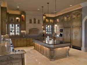 kitchens cabinet designs of central fl custom kitchen