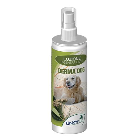 skin lotions for dogs cuteness derma union bio shop