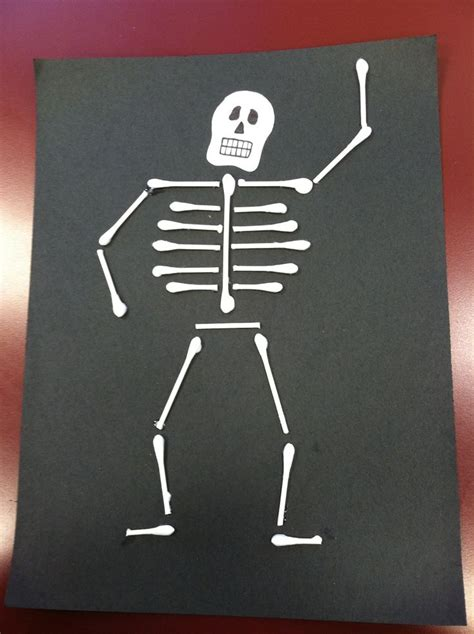 amy s q tip skeleton is better than yours education