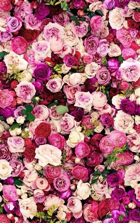 Buket Bunga Mawar Satin Maroon And Gold roses fleurs fond d 233 cran image 4278907 par owlpurist sur favim fr