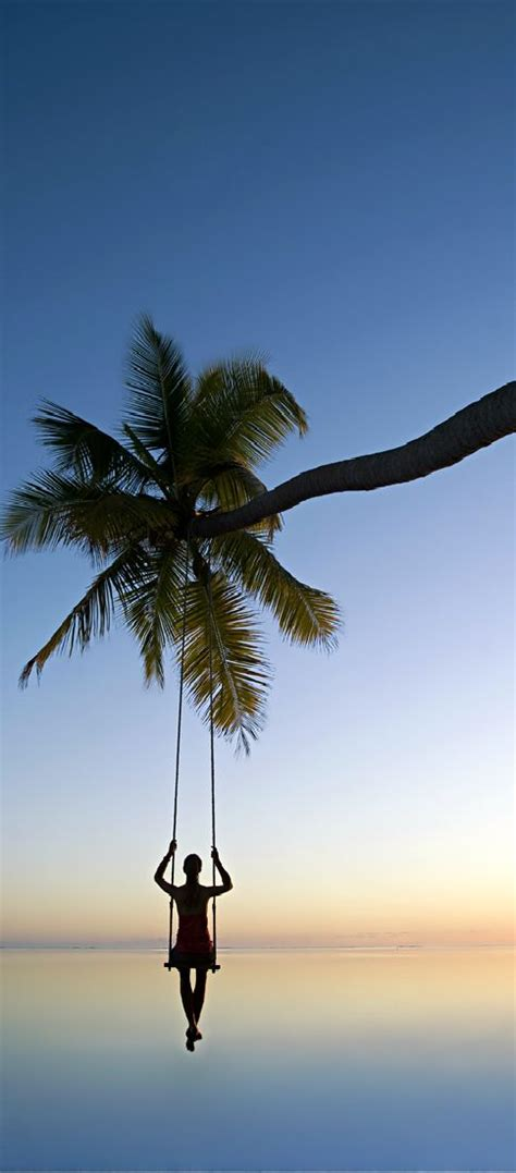tropical swing 1000 images about summer vibes on pinterest alice