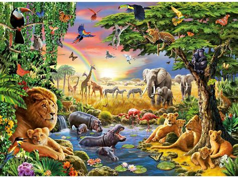 animal jungle jungle animals four wallpapers jungle animals four stock