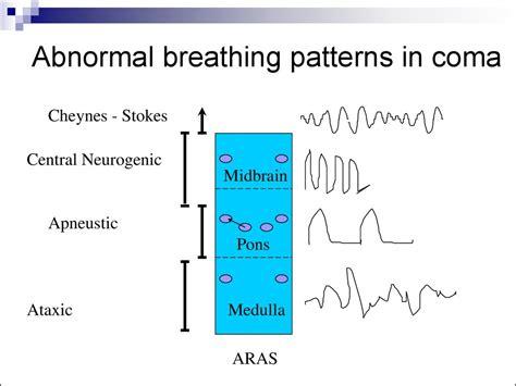 breathing pattern video coma презентация онлайн