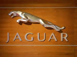 image gallery jaguar sign