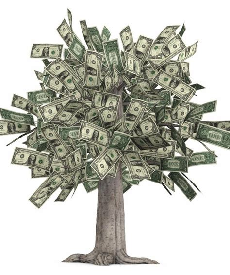 Sell Gift Cards For Cash In Person Canada - money tree glossy poster picture photo grows dollars bills currency cash 1560 ebay