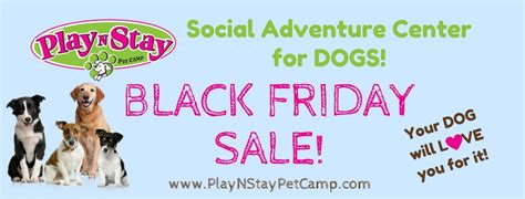 6 Reasons To Check Out Our Black Friday Preview Play N Stay Pet C Fun Dog
