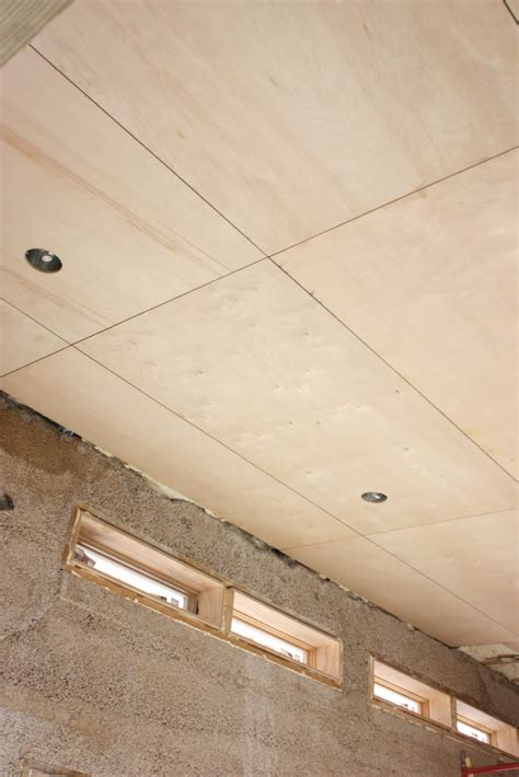 Painted Tray Ceiling Ideas The Push House Plywood Ceiling Looks Amazing