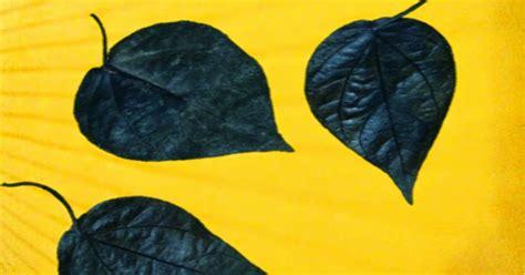 Barang Antik Anti Tembak cara tes daun sirih hitam barang antik sulteng