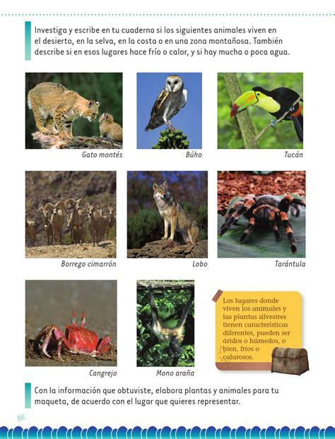 imagenes de animales de la selva garden exploracion 2 by santos rivera page 58 issuu
