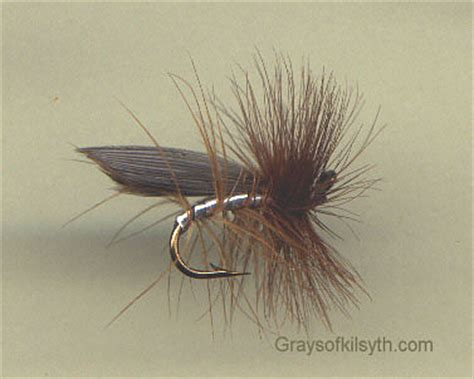 blue quill pattern blue quill fly pattern free patterns