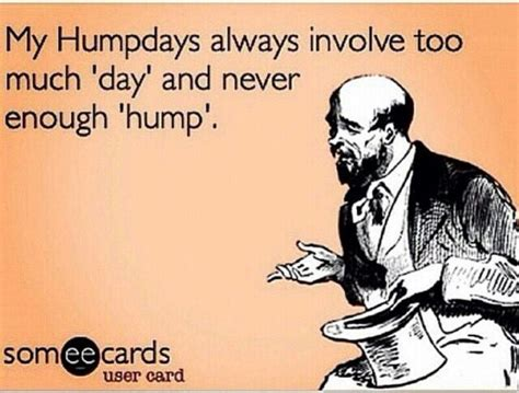 images  hump day  pinterest happy