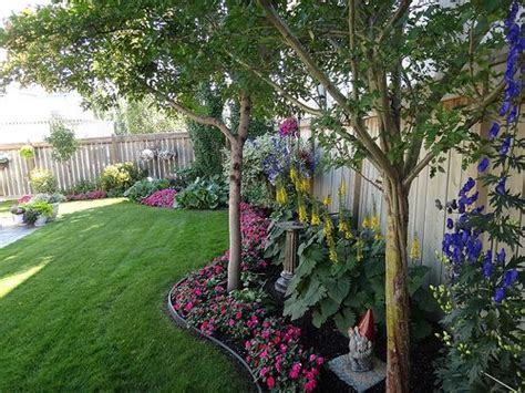 what trees to plant in backyard the 25 best landscaping along fence ideas on pinterest