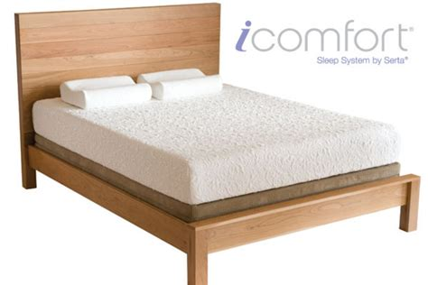 extra long futon icomfort 174 by serta insight twin extra long mattress
