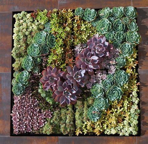 a succulent wall industrial garden los angeles by bluegreen landscape design