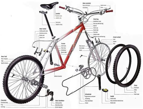 the anatomy of a mountain bike cool biking zone bicycle parts bicycle pinterest bicycle parts the o