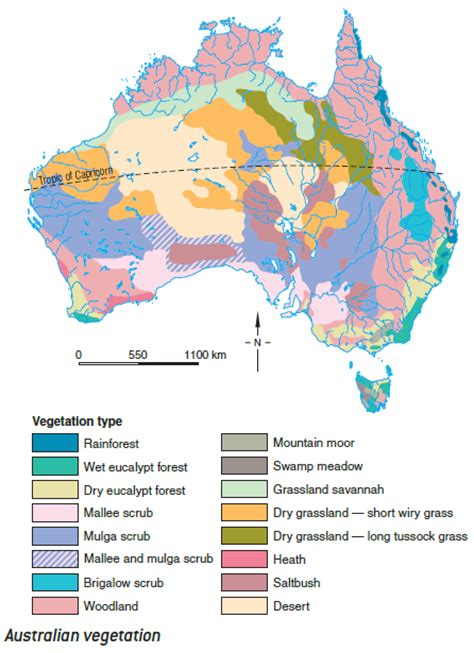 Patterns In Natural Resources | patterns of vegetation hsie kingsgrove